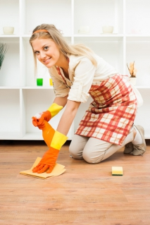 Important Tips for Carpet Cleaning
